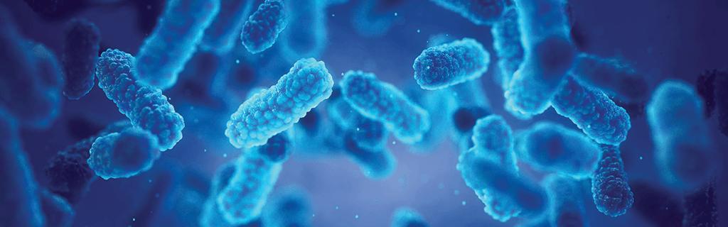 Microbial Inoculants